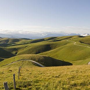 Le colline di Soave