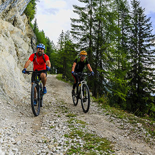 Stoneman Trail